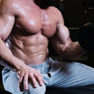 Resistance training programme-Male Bodybuilder