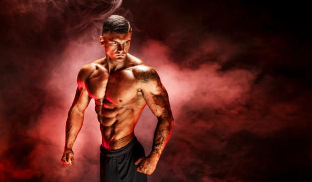 test The Science of Building Muscle Part 1: Introduction
