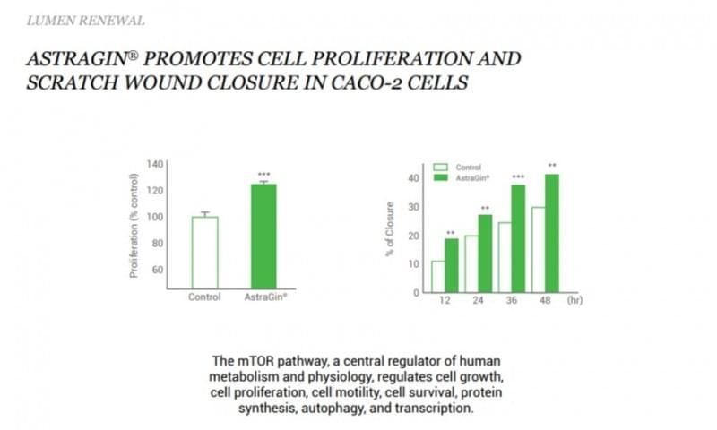 AstraGin-Cell Proliferation