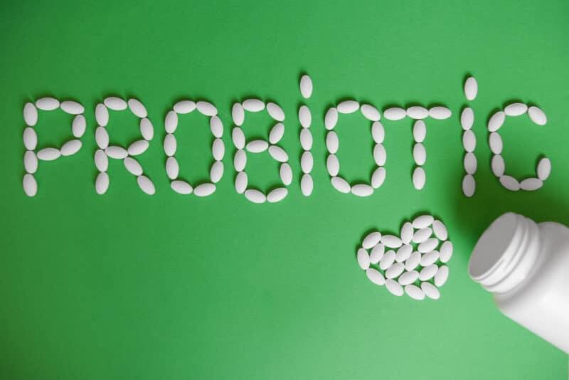 Probiotics-Mass Gain